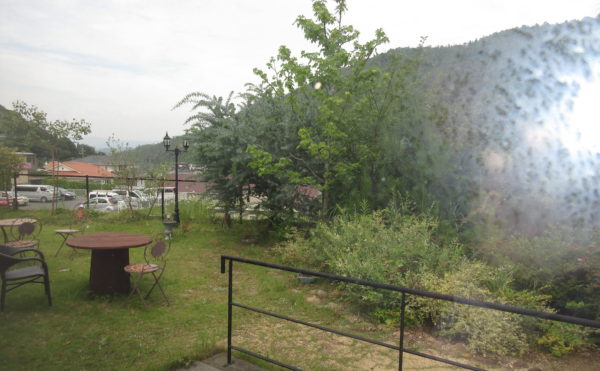 居室から見た外の景色