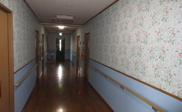 3階廊下(1階はピンク色・2階は緑色・3階は青色の廊下です)