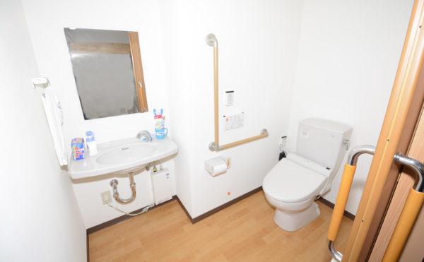 入り口もトイレ内も十分な広さがあり、洗面台も車いすでも使いやすい設計