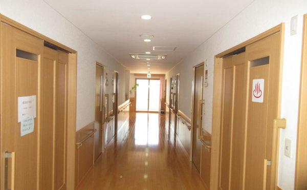 居室に続く廊下も木材が使われていて明るい印象です