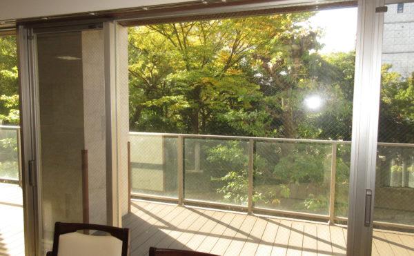 食堂から見える景色。11月撮影ですが木々も若干色づいています。