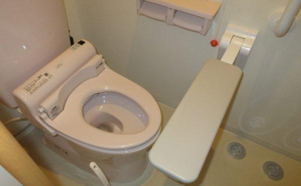 居室のトイレは折り畳みのレバーが前方についているのでより安全です